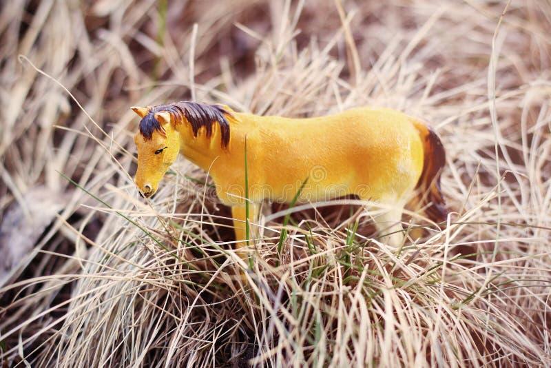 Caballo del juguete en la naturaleza fotografiada como real entre fotografía de archivo libre de regalías
