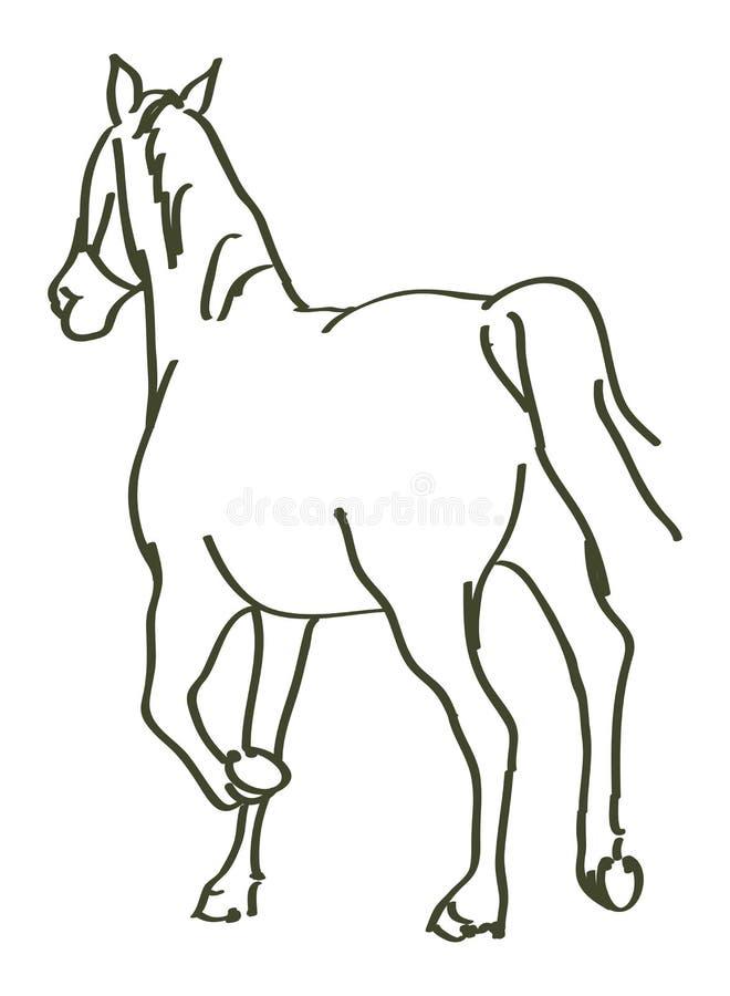 Caballo dibujado mano ilustración del vector