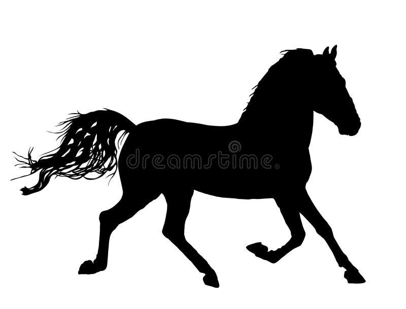 Caballo elegante en galope, silueta stock de ilustración