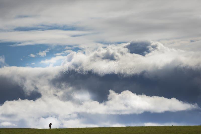 Caballo islandés en Islandia con las nubes fotos de archivo libres de regalías