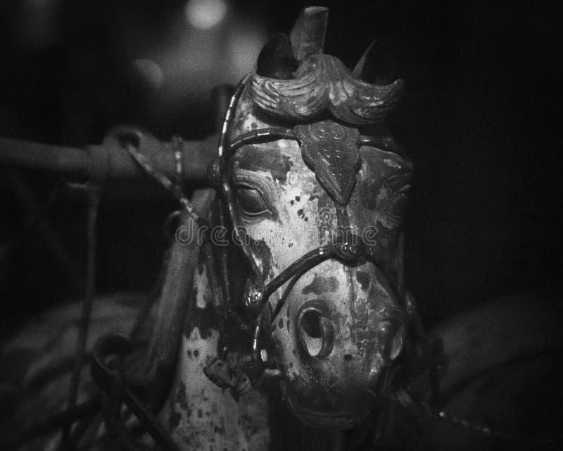 Caballo oscuro fotografía de archivo