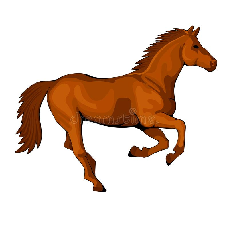 Caballo que corre en una figura del galope libre illustration