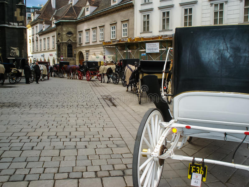 Caballo y carros en Viena imágenes de archivo libres de regalías