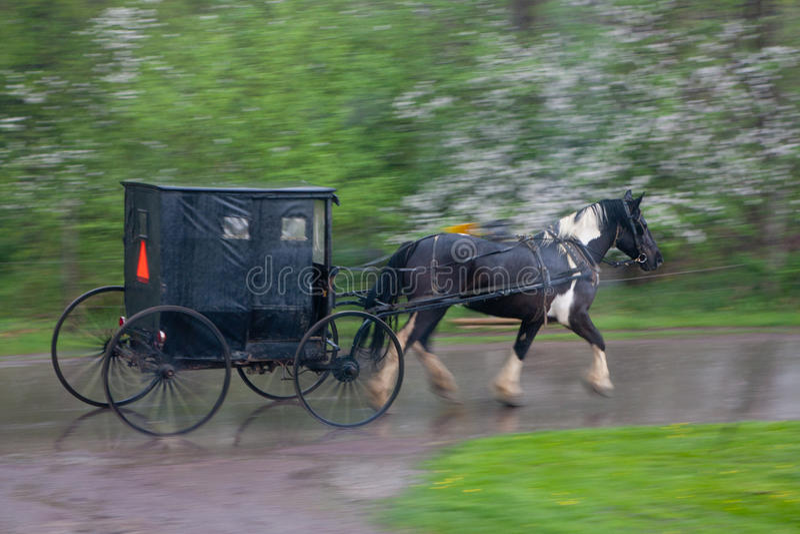 Caballo y cochecillo de Amish imagen de archivo