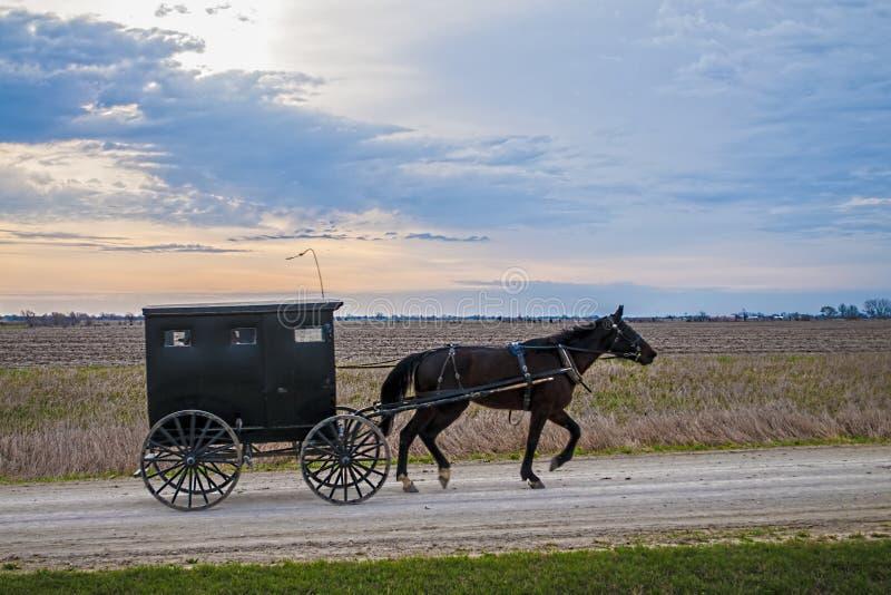 Caballo y cochecillo de Amish imágenes de archivo libres de regalías