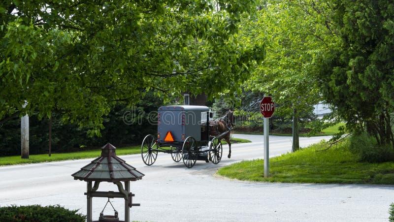 Caballo y cochecillo de Amish que van abajo del camino foto de archivo
