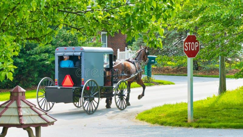 Caballo y cochecillo de Amish que van abajo del camino fotos de archivo