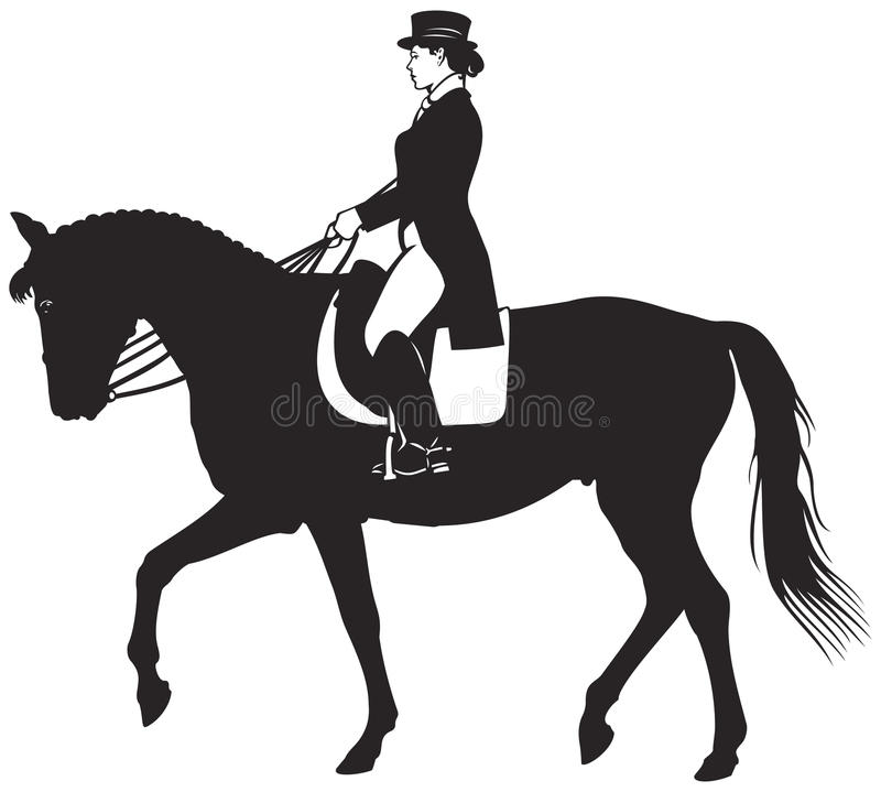 Caballo y jinete de la doma libre illustration