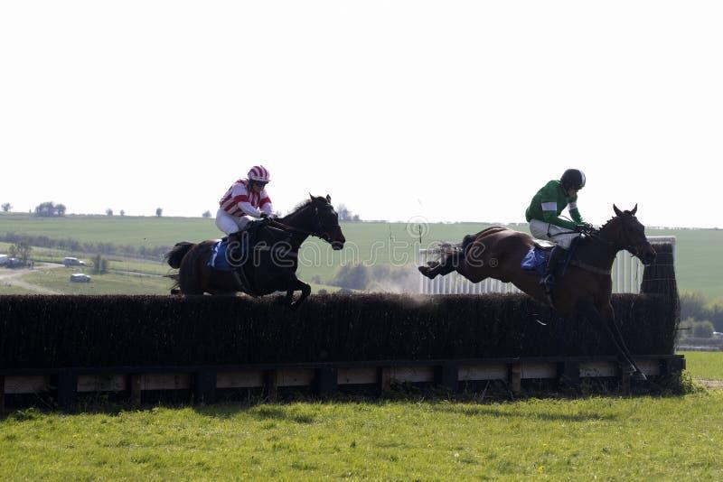 Caballo y jinete de raza que saltan sobre una cerca foto de archivo