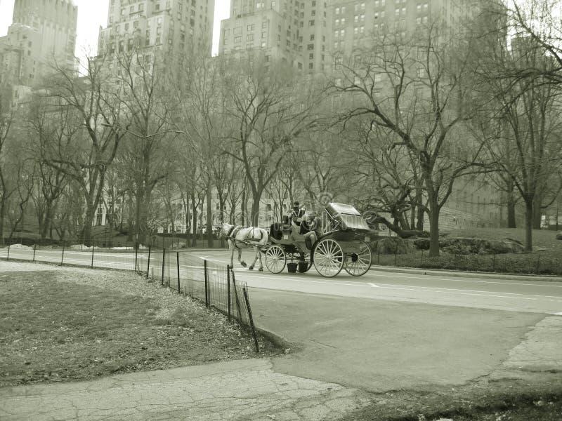 Caballo y paseo con errores, nyc de Central Park imagen de archivo