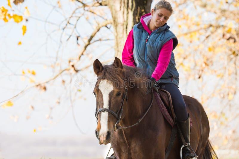 Caballos de montar a caballo de la chica joven imagen de archivo libre de regalías