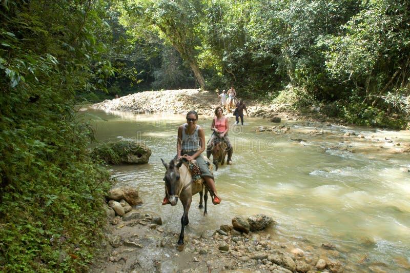 Caballos de montar a caballo de la gente imagenes de archivo