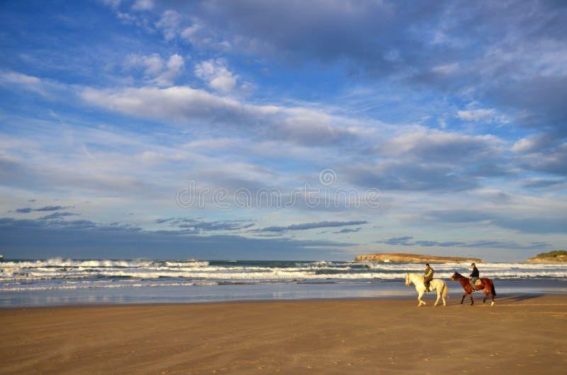 Caballos en la playa de Somo imagen de archivo