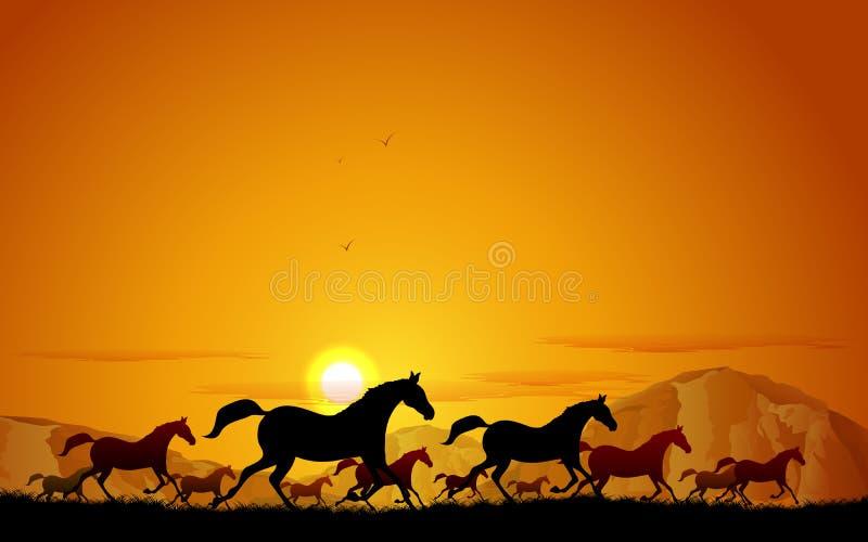 Caballos que corren en campo ilustración del vector