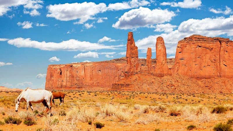 Caballos salvajes en valle del monumento imagenes de archivo