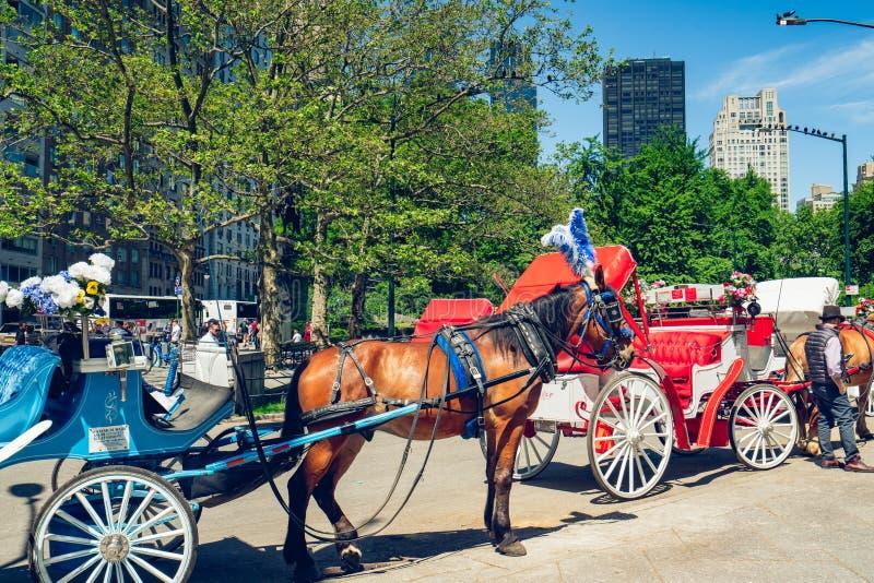 Caballos y carros hermosos en Central Park en New York City New York City /USA fotos de archivo