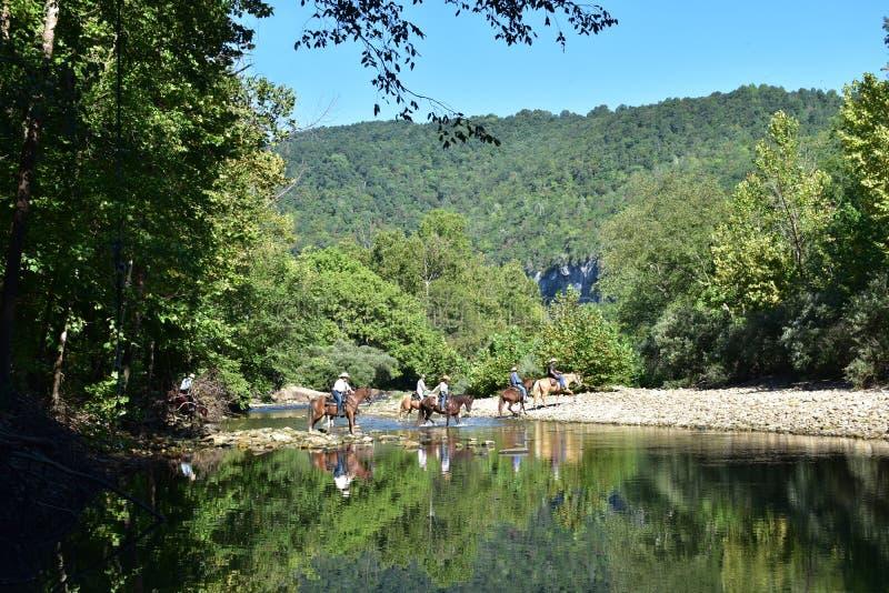 Caballos y jinetes que cruzan un río imagenes de archivo