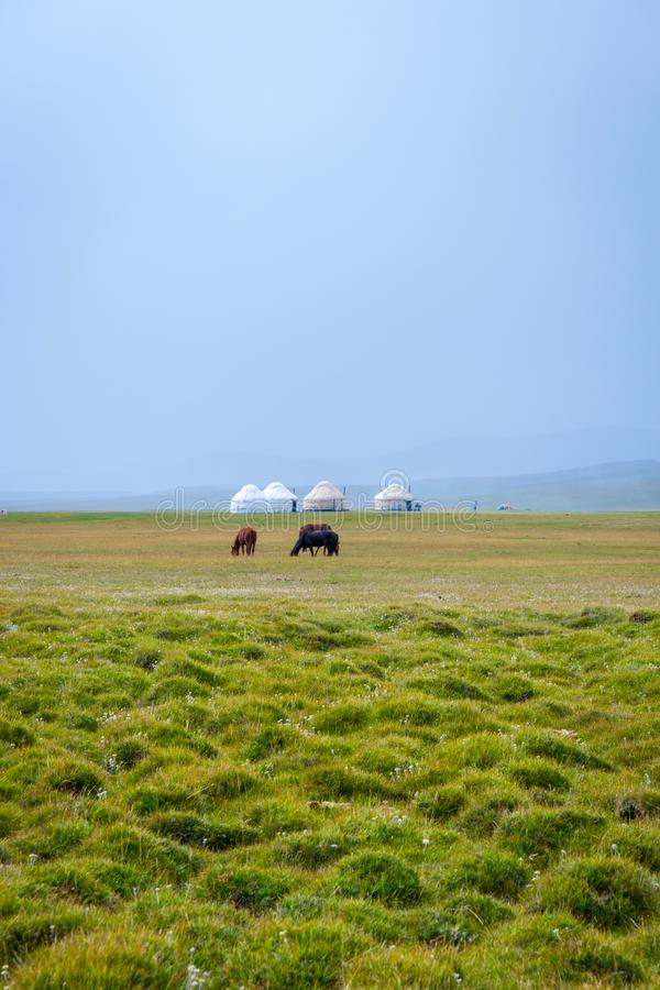 Caballos y yurts por el lago Kul de la canción, Kirguistán imagenes de archivo