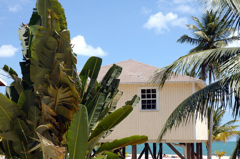 cabana belize стоковые изображения