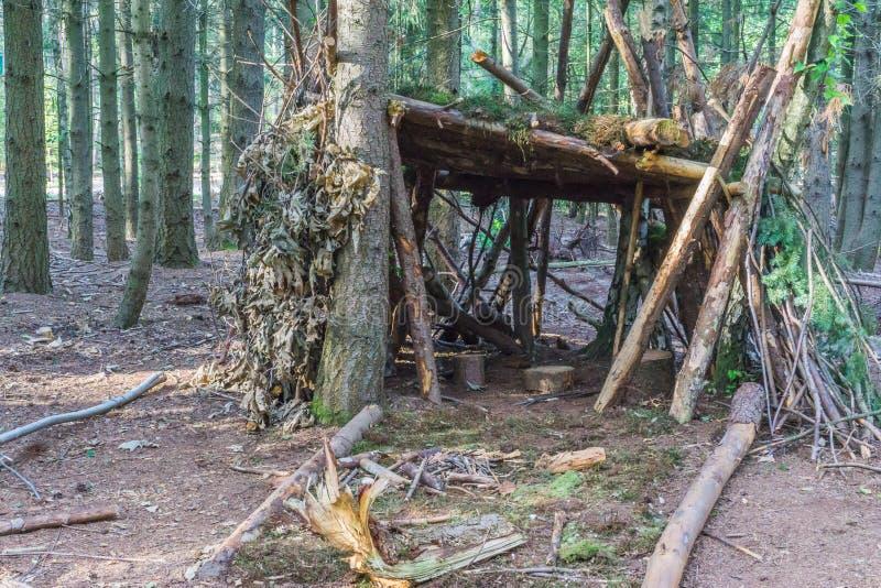 Cabana da árvore da opinião da floresta dos ramos e das folhas fotos de stock