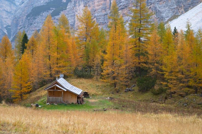 Cabana da montanha nas dolomites imagem de stock