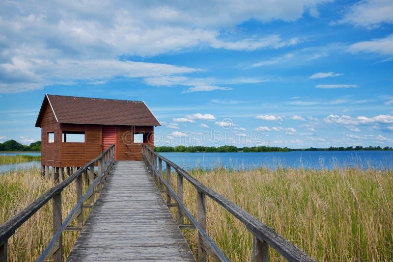 Cabana da ornitologia com pathand de madeira o lago Tisza, Hungria imagem de stock royalty free