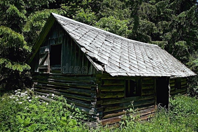 Cabana de desintegração abandonada no vale do vale de Cutkovska fotografia de stock royalty free