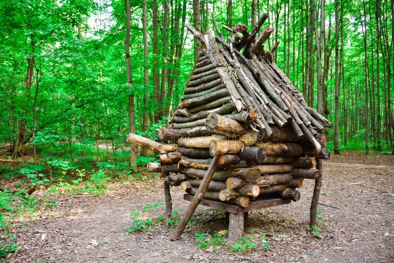 Cabana do babá-Yaga na floresta, celeiro dos galhos, cabana de madeira, cabana nos pés de galinha imagem de stock