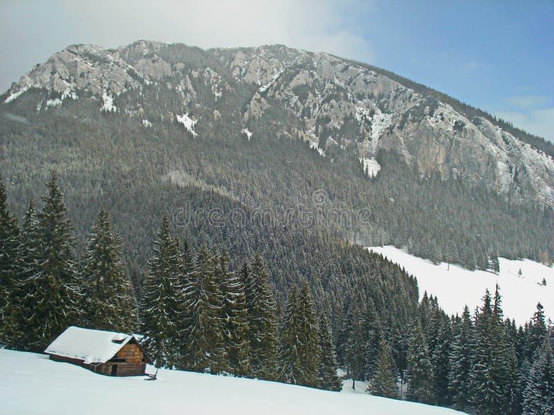 A cabana dos shepperd velhos no inverno fotos de stock