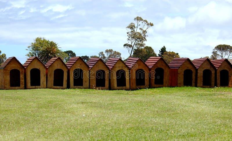 Cabanas do Doggy foto de stock royalty free