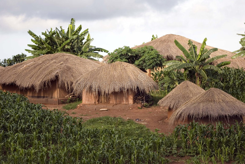 Cabanas Thatched fotografia de stock royalty free