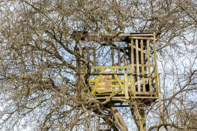 Cabane dans un arbre photo stock