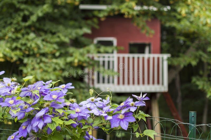 Cabane dans un arbre derrière la barrière avec des fleurs dans l'avant photos stock