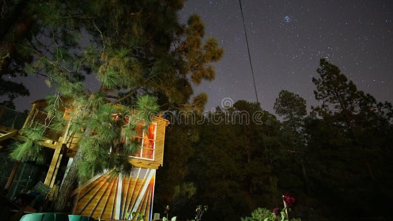 Cabane dans un arbre sous les étoiles de ciel nocturne image libre de droits