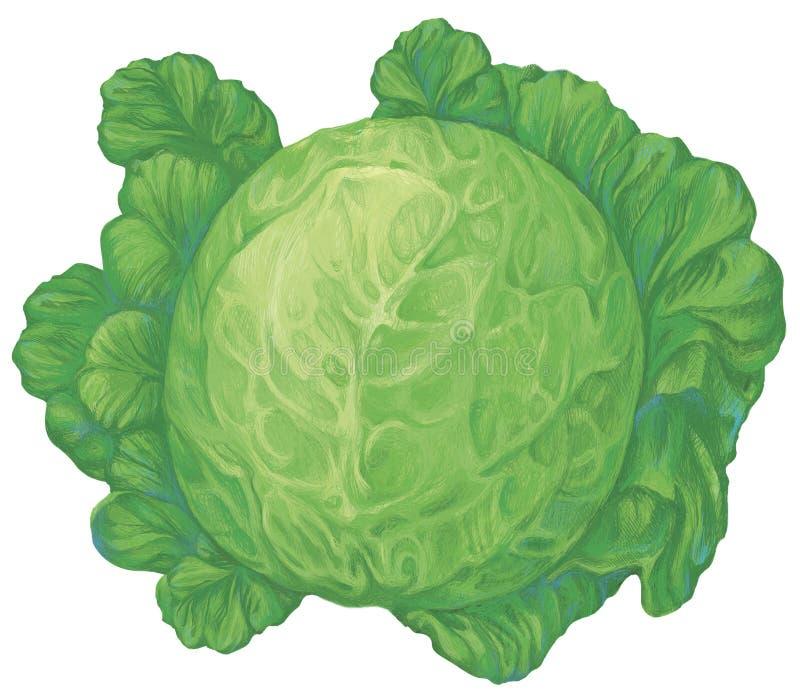 Cabbadge