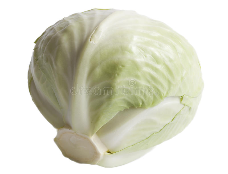 Cabbage. stock photos