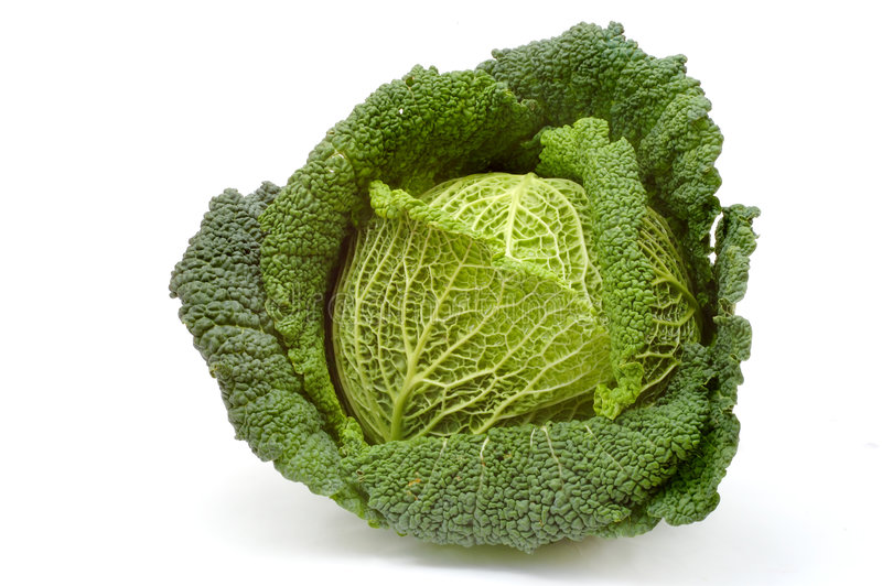 Download Cabbage Stock Photo - Image: 394030