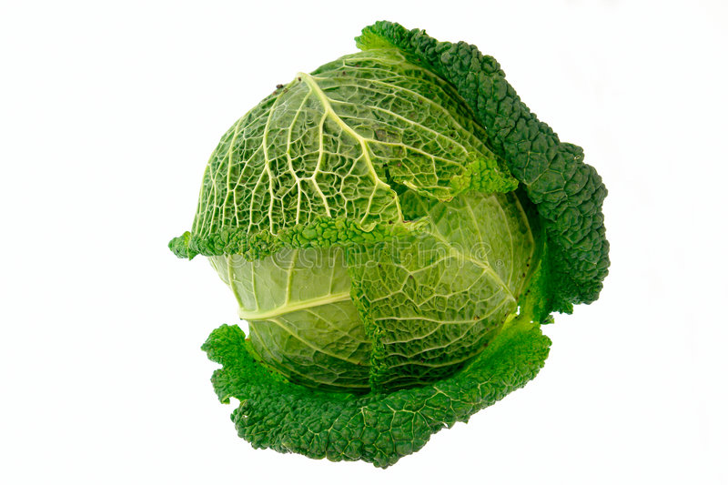 Download Cabbage-4 Royalty Free Stock Photography - Image: 1462957