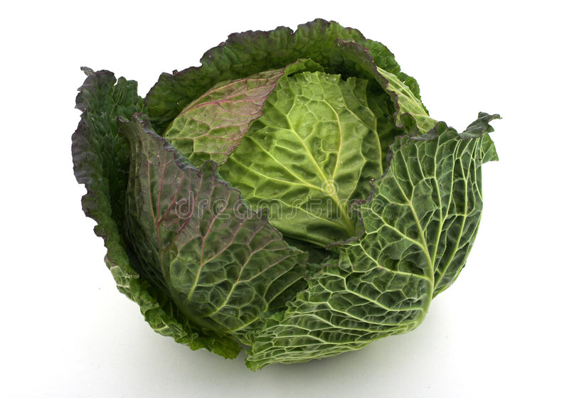 Download Cabbage stock image. Image of slim, green, diet, nutrition - 538447