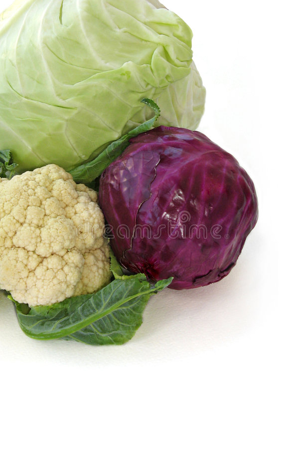 Cabbage. Red, white cabbage and cauliflower royalty free stock photos