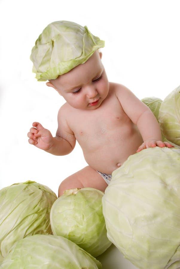Cabbage boy stock photos