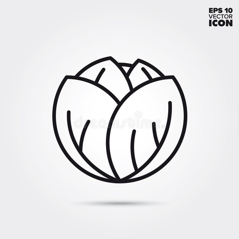 Cabbage head vegetable vector line icon vector illustration