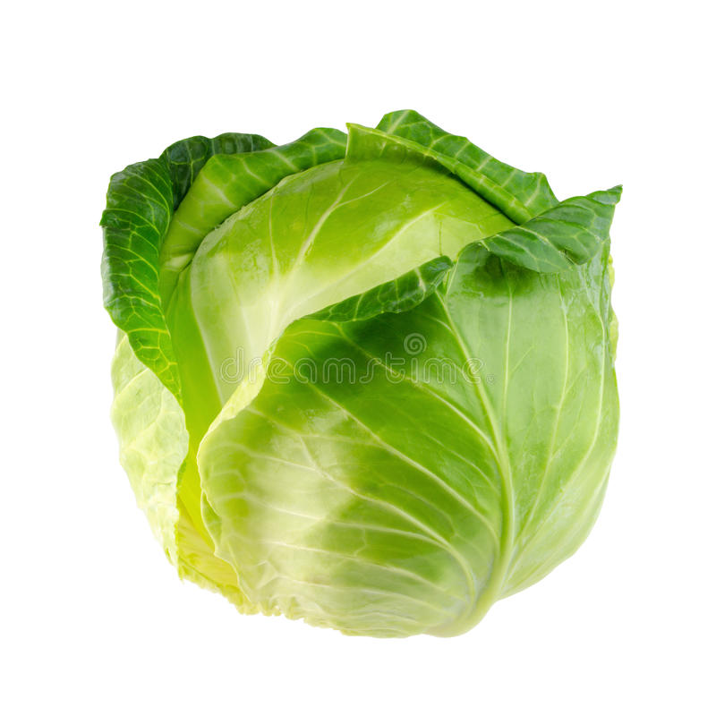 Cabbage. Isolated on white background royalty free stock photography