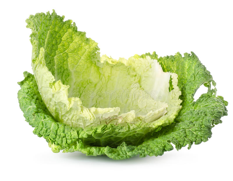 Cabbage leaves royalty free stock photo