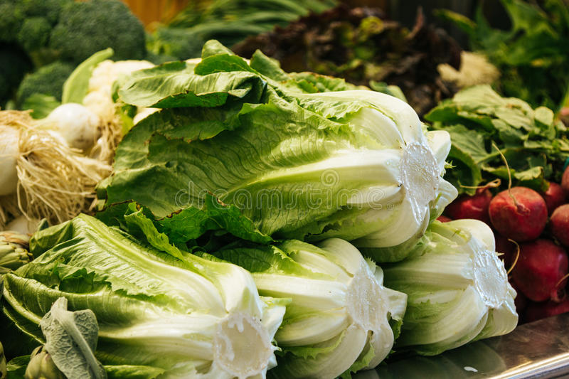Download Cabbage At The Marketplace Stock Photo - Image: 83723523