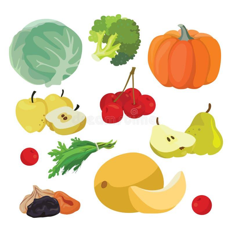 Cabbage, pumpkin, broccoli, melon, greens, cherry, apples, pear, dried fruits, stock illustration