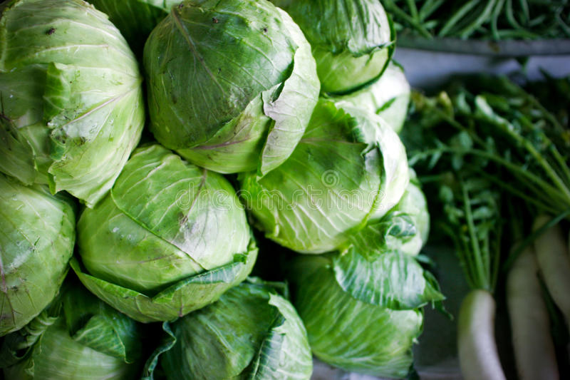 Cabbage and radish on market. stock photo