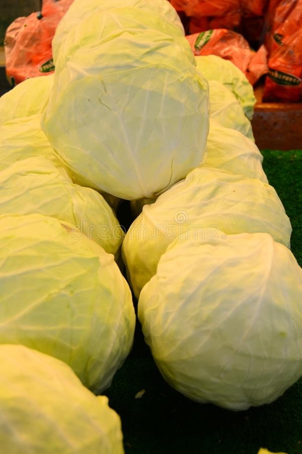 Cabbage for your banner and brochure. This Image for your Fruit and Vegetable Business royalty free stock images