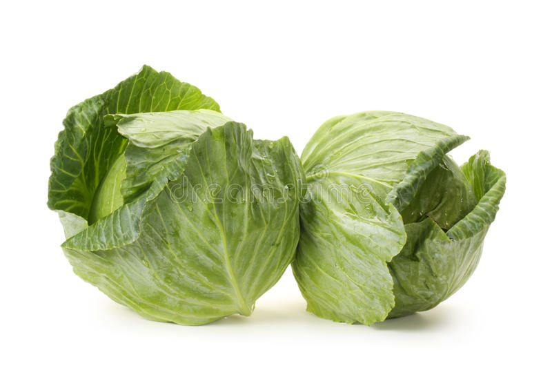 Cabbages royalty free stock image