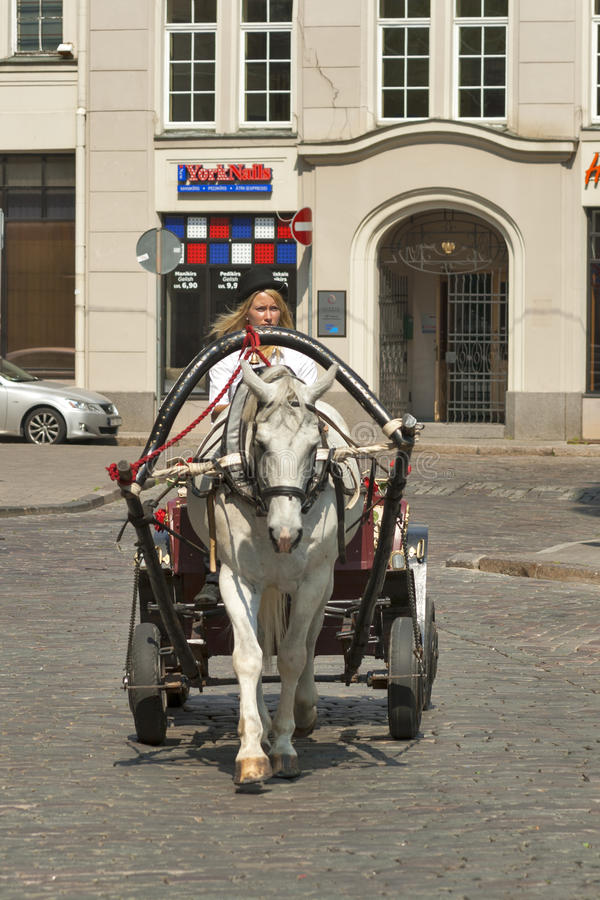 Cabby in Riga royalty free stock photography